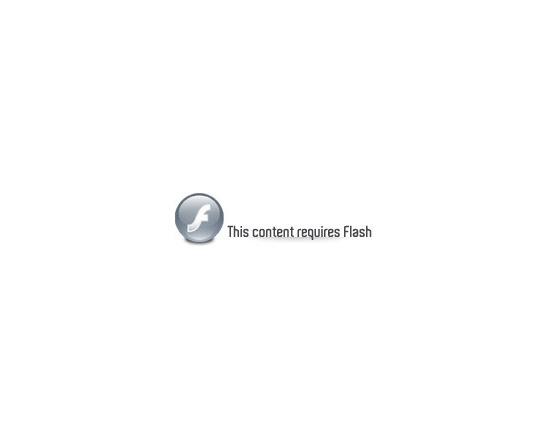 This content requires Flash