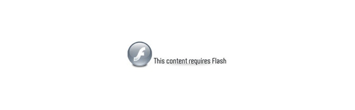 This content requires Flash